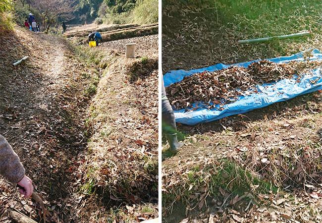 水路灌漑と田んぼの落ち葉取り除き