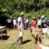 茶摘みと茶作り体験イベント
