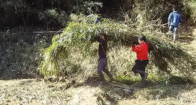 里山整備切った竹