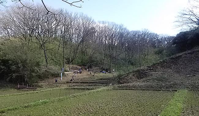 3月の里山